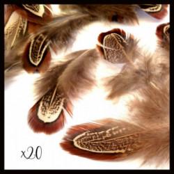 Lot de 20 plumes naturelles mixe aléatoire 40~80x10~20mm,amérindiens,toho,boho,bohème,ethnique