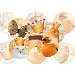 Images digitales 25,20,18,30x40,18x25mm Hiboux,oiseaux,couronne écritures,textes,messages ,images pour cabochons