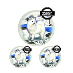 Parure 25MM-20mm VERRE, 3 Cabochons  en verre  25m  Ref P-0021 Samoyède,chien,animaux