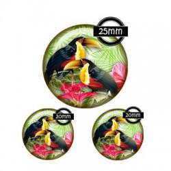 Parure cabochon verre 25mm,20mm,toucan
