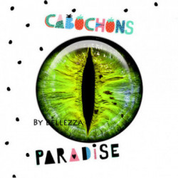 12mm VERRE 2 CABOCHON  VERRE Cabochons  Ref 12228 Yeux,oeil,animaux,chat,colors