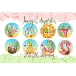 Images digitales 25,20,18mm,Exotique flamingo,flamant rose images pour cabochons