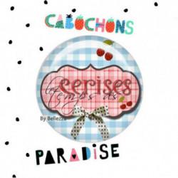 20mm VERRE, 2 Cabochons  verre 20mm  Ref10848Cerises,vichy,bleu,rétro,fashion,vintage,retro,1€,,collection cabochons paradise,bijou