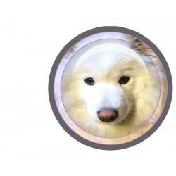Badge image digitale, creez et personnalisez vos images
