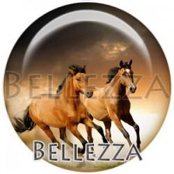Cabochon verre, cabochon resine, chevaux, couleur marron et beige