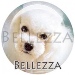 Cabochon verre, cabochon resine, chien de compagnie, couleur blanc