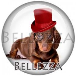 Cabochon verre, cabochon resine, chien de compagnie, couleur marron