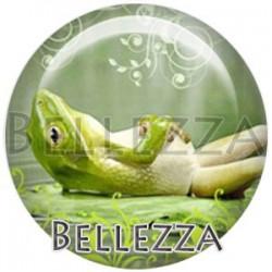 Cabochon verre, cabochon resine, grenouille, couleur Vert