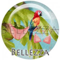Cabochon verre, cabochon resine, perroquet, exotique, couleur Rouge et multicolore