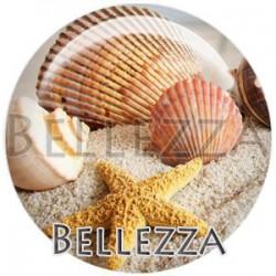Cabochon verre, cabochon resine, etoile de mer, mer, plage