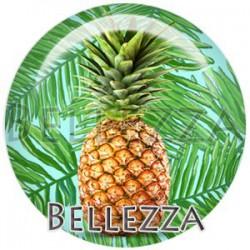 Cabochon verre, cabochon resine, ananas, fruit, nature