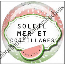 1 CABOCHON  résine Cabochons Rond 25mm  Ref 11970 Coco et coquillages,Vacances,pastèque,été,mer,marin,nautique,cadeau, porte clés