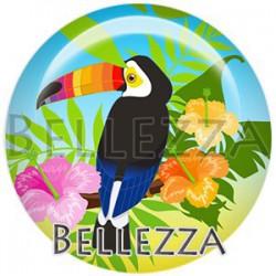 Cabochon verre, cabochon resine, toucan, exotique, tropical, été, vacances
