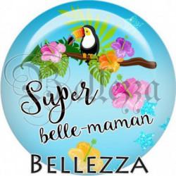 Cabochon verre, cabochon resine, toucan, exotique, super belle-maman, famille