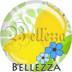 Cabochon verre, cabochon resine, citron, fruit, nature, été