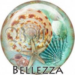 Cabochon verre, cabochon resine, coquillages, marin, mer, océan, vacances, été