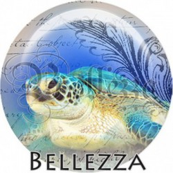 Cabochon verre, cabochon resine, tortue, marin ,mer, animaux