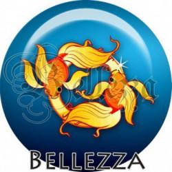 Cabochon verre, cabochon resine, signe astrologique, zodiaque