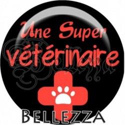 Cabochon verre, cabochon resine, vétérinaire, chien, animaux, métier