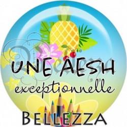 Cabochon verre, cabochon resine, aesh, auxiliaire, scolaire, ananas, exotique, tropical