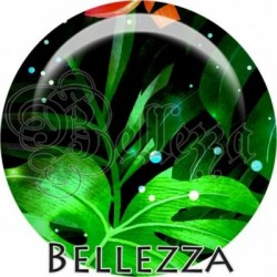 Cabochon verre, cabochon resine, philodendron, feuille, tropical, exotique, nature