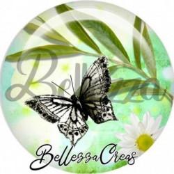 Cabochon verre, cabochon resine, papillon, printemps, animaux