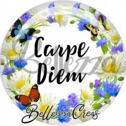 Cabochon verre, cabochon resine, carpe diem, fleur, nature, printemps