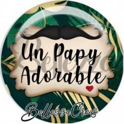 Cabochon verre, cabochon resine, papy, tropical, exotique, fête des pères