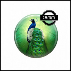18mm VERRE, 2 Cabochons  en verre  Ref 7545Paon,plume de paon,images cabochons,bijoux en verre