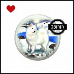25mm VERRE, 1 Cabochons  en verre  Ref 0021Samoyède,chien blanc,chiens des neiges,hiver,froid,coup de coeur,pour ma p'tite Laiky